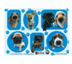 dog theme stickers