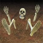 Glow Lawn Skeleton