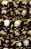catacombs scene setter