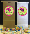 custom girls birthday party favor bags