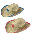 western baby shower cowboy hats
