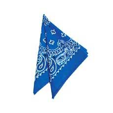 Royal Blue Bandana