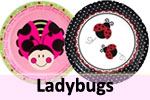 Sweet Ladybug theme birthday party